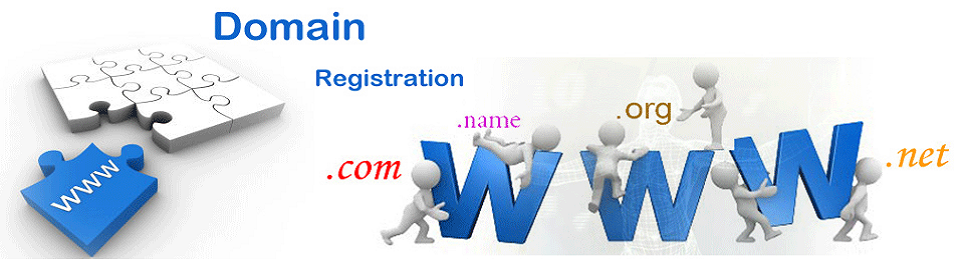 Domain and Hosting Services